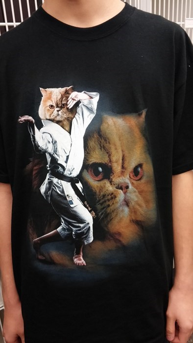 poorly dressed Memes t shirts Cats - 8375295744