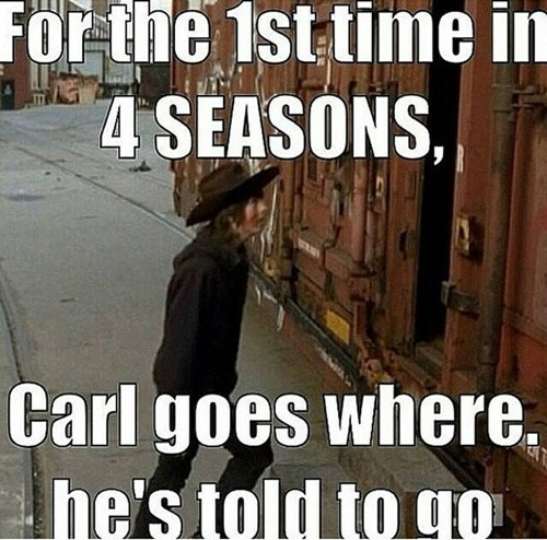 carl grimes,stay in the house