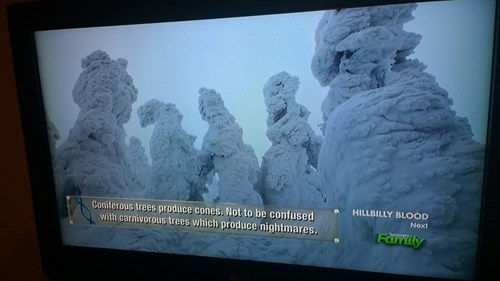 discovery channel trees television - 8375486976