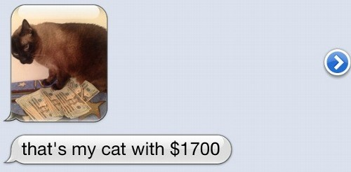texting Cats money - 8375588096