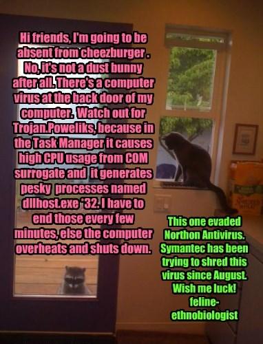 Cheezburger Image 8375673600
