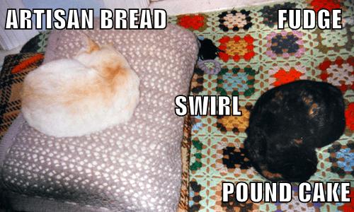 Dish - ARTISAN BREAD OFUDGE SWIRL POUND CAK