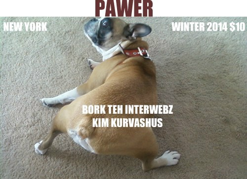 dogs,the internets,parody,kim kardashian