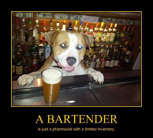 dogs inventory bartender caption pharmacist - 8376977152