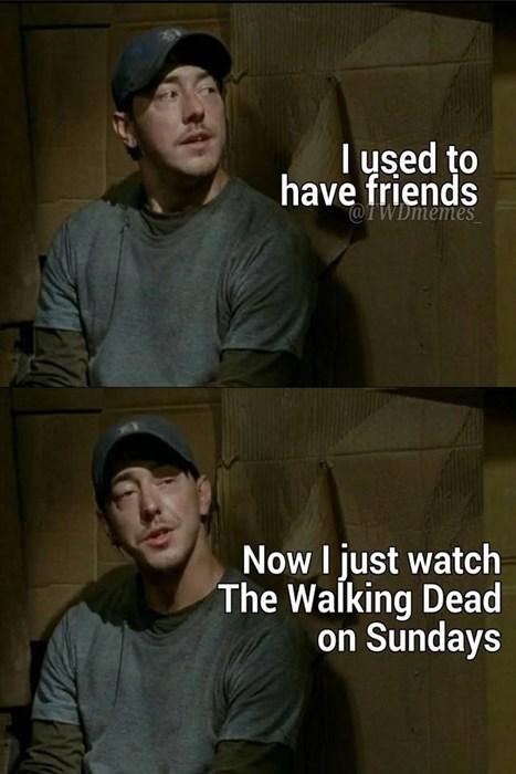 friends The Walking Dead - 8377138432