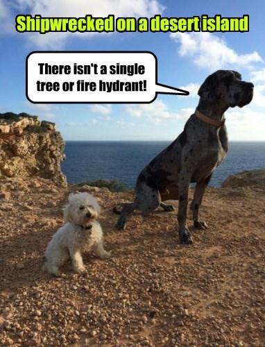 pee fire hydrant tree - 8377967872
