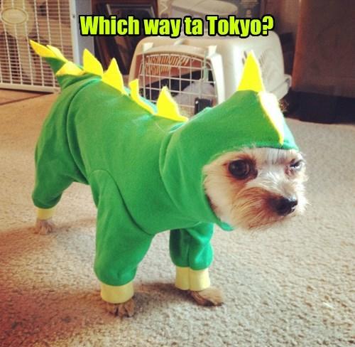 costume dogs godzilla squee - 8377969408