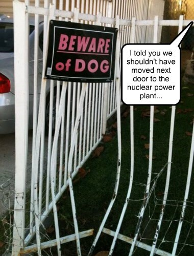dogs beware whoops nuclear - 8378147328