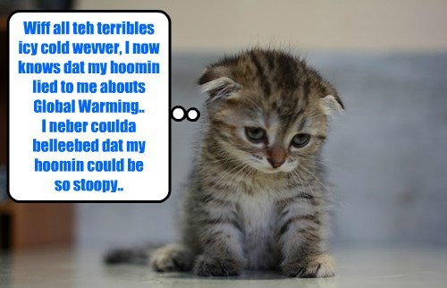 Wiff all teh terribles icy cold wevver, I now knows dat my hoomin lied to me abouts Global Warming.. I neber coulda belleebed dat my hoomin could be so stoopy..