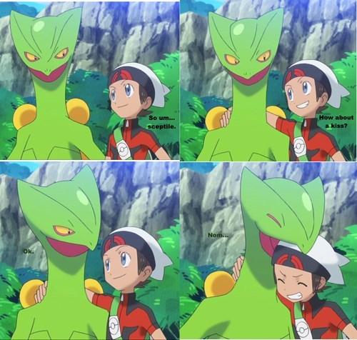 Pokémon sceptile - 8379146496
