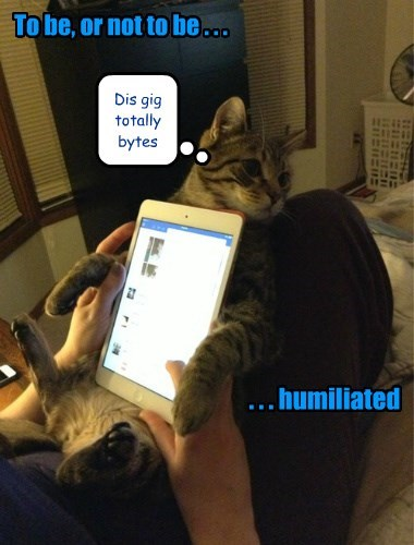 this sucks puns tablet gig Cats - 8379285504