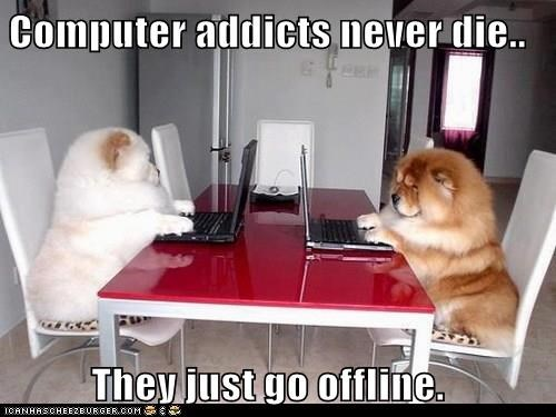 animals dogs computer caption offline - 8379339008