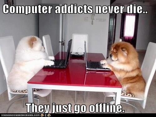 animals dogs computer caption offline - 8379339008