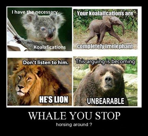 puns funny animals - 8379453696