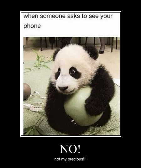 panda phone funny