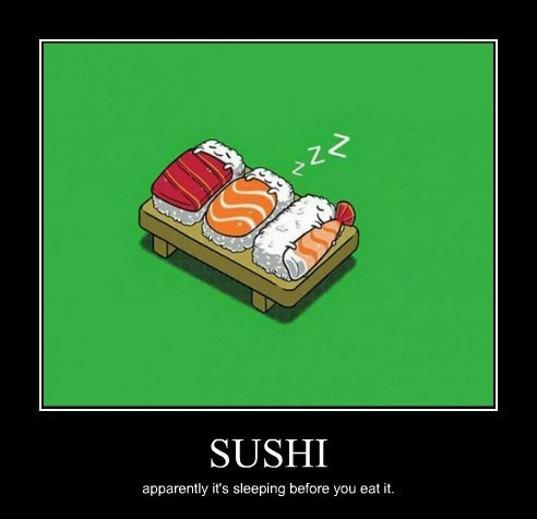 sushi,rice,sleeping,funny