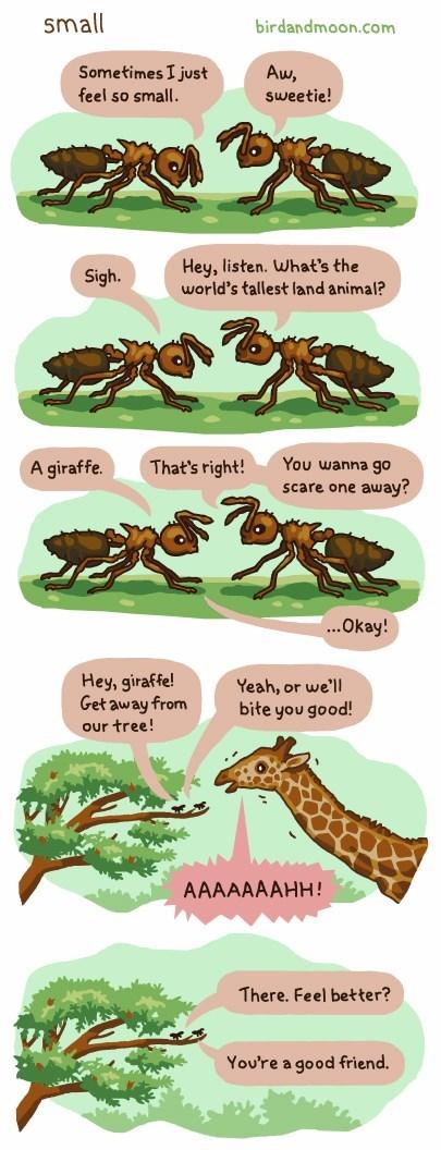 critters ants giraffes web comics - 8379876608