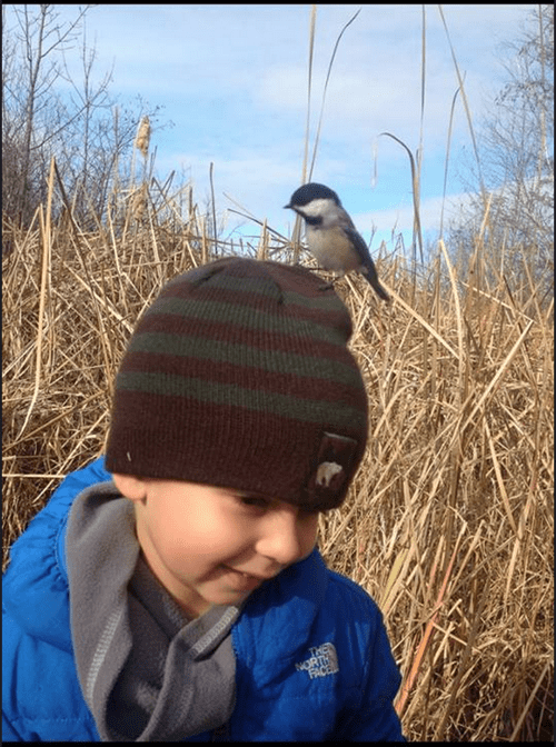 birds,kids,cute,parenting