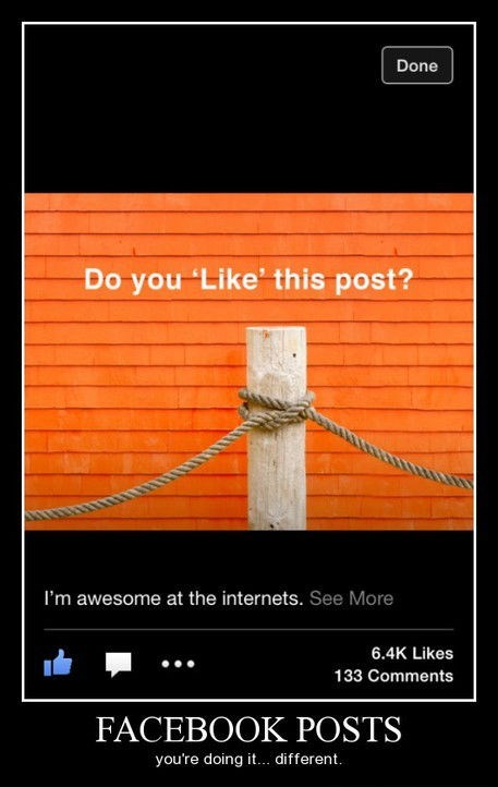 post,puns,literal,facebook,funny