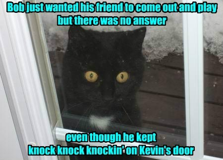 Bob just wanted his friend to come out and play but there was no answer even though he kept knock knock knockin' on Kevin's door