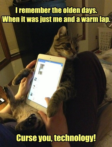 technology,tablet,good old days,Cats
