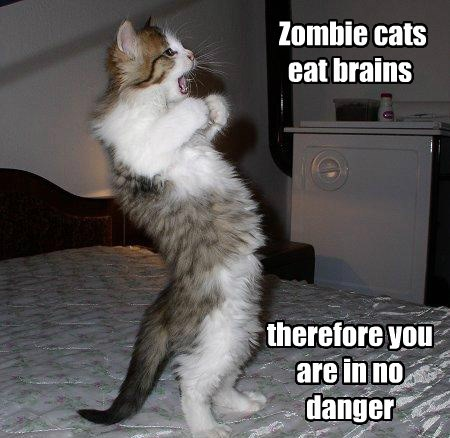 brains,zombie,Cats