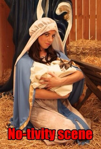 christmas,Grumpy Cat,nope,Nativity,Cats
