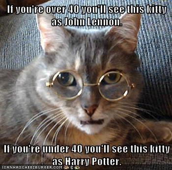 animals Harry Potter john lennon Cats