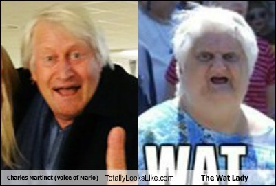 Charles Martinet (voice of Mario) Totally Looks Like The Wat Lady