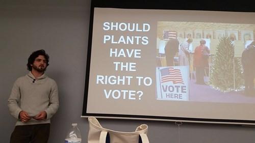 elections politics school voting - 8380652032