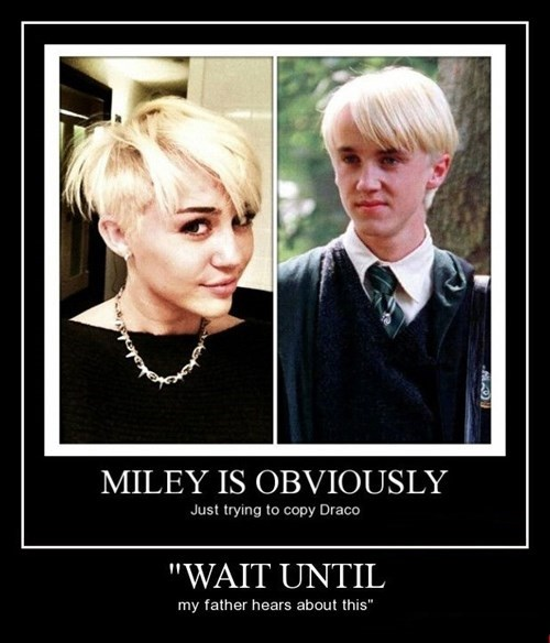 Harry Potter draco malfoy funny - 8380699904