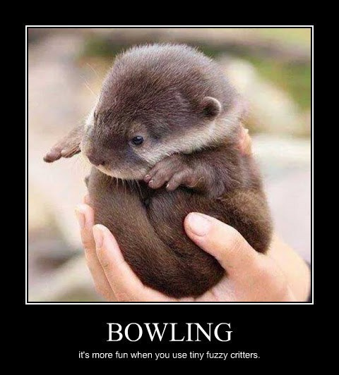 cute fuzzy bowling funny animals - 8380700672