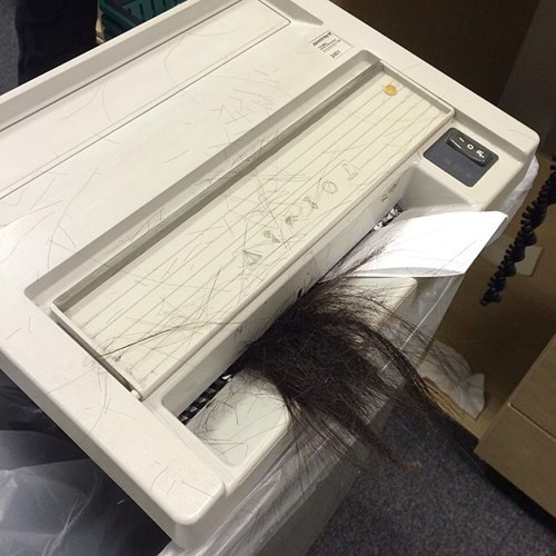 hair,ouch,monday thru friday,paper shredder,g rated