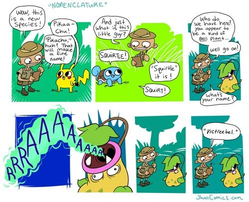 Pokémon pokemon logic naming web comics - 8380782848