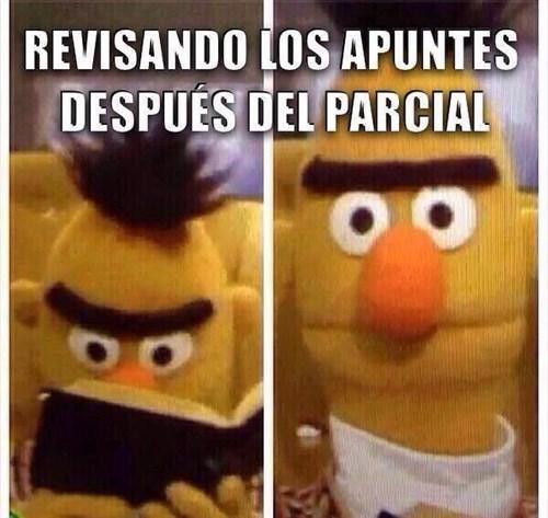 bromas Memes - 8380783360