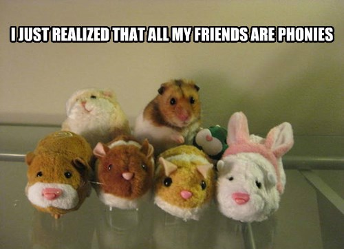 friends,fake,hamster