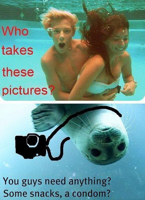 underwater pictures seal funny condoms