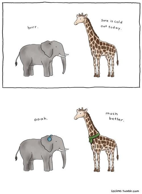 elephants giraffes web comics - 8380882688