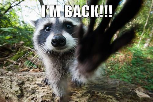 I'M BACK!!!