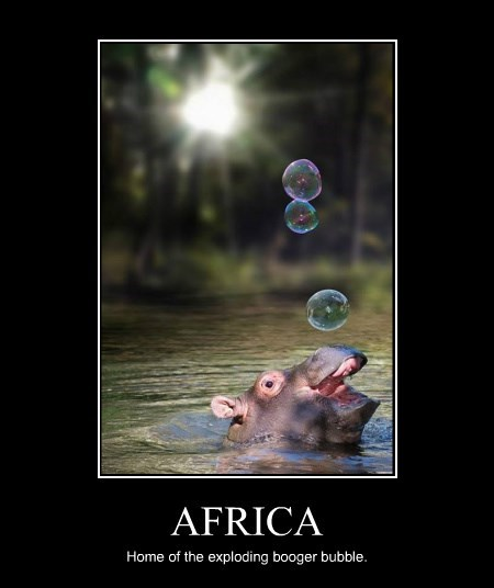 explode africa booger bubble hippo - 8381092352