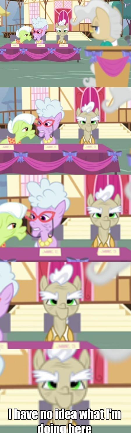 background pony i have no idea old man pony - 8381604352