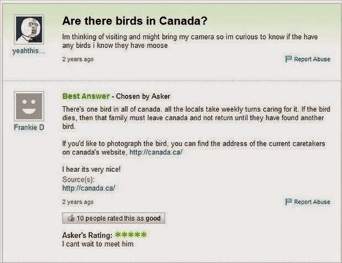 Canada,birds,Yahoo Answer Fails,failbook,g rated