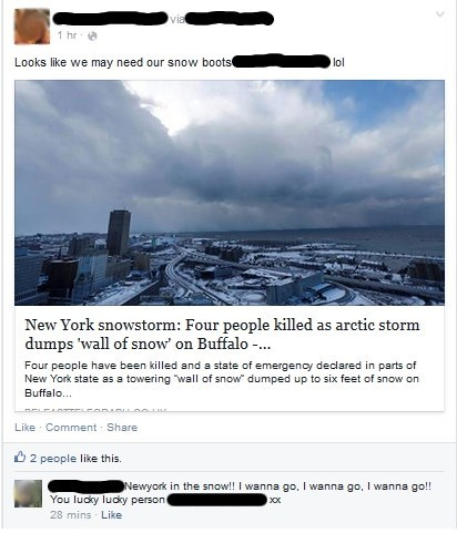 snow,facepalm,buffalo,winter