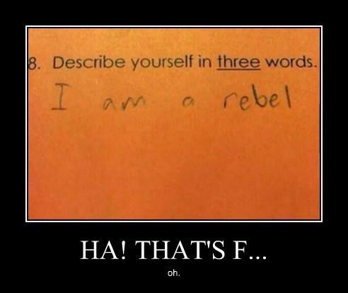 homework rebel funny - 8382253568