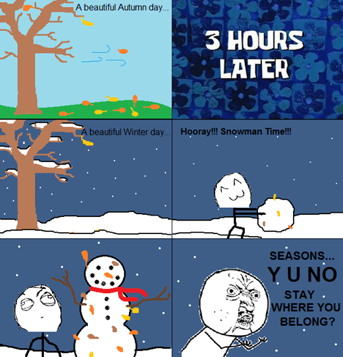 Y U NO,weather,seasons,winter,snowman,fall