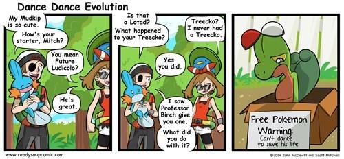 Pokémon,ORAS,ludicolo,torchic,treecko