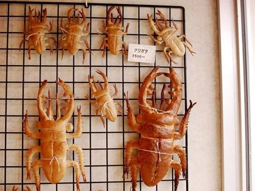 bugs,wtf,mindwarp,cockroach