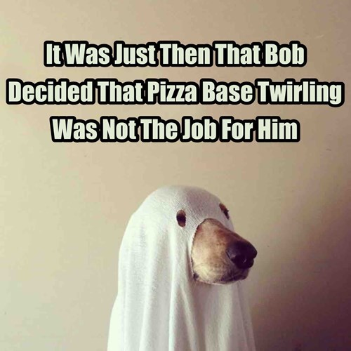 funny pizza fail Cute dogs dogs ghost pizza impression - 8384253952