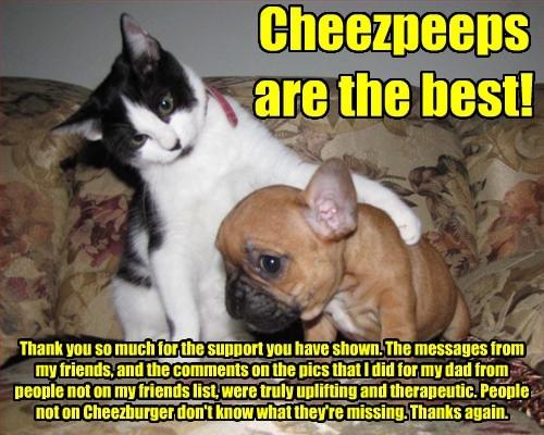 Cheezburger Image 8384355328