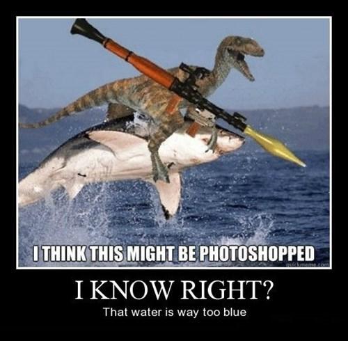 blue dinosaur photoshop shark funny - 8384880384
